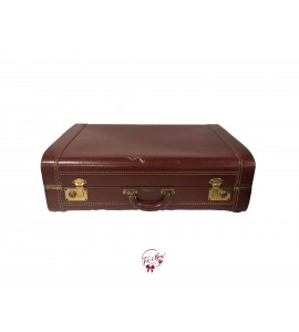 Luggage: Air King Brown Leather Luggage