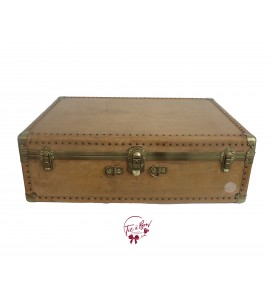 Trunk: Beige and Gold Vintage Trunk