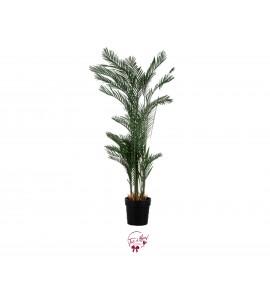 Palm Tree (Faux)