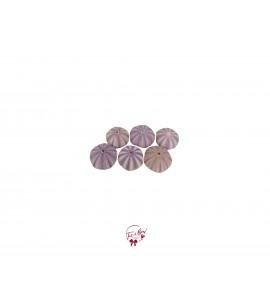 Shell: Purple Sea Urchin Shells Set of 6