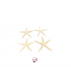 Starfish Set of 4