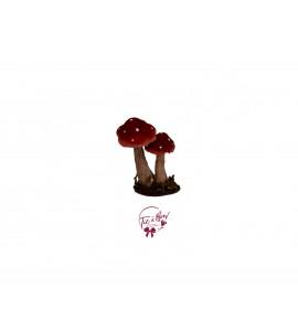 Mini Duo Mushrooms