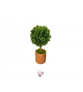 Plant: Topiary Plant