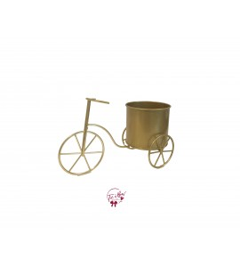 Tricycle: Small Golden Tricycle Planter