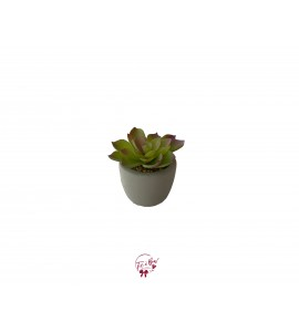 Cactus: Green Faux Cactus in a Cement Pot (Mini)