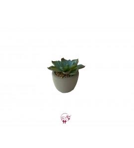 Cactus: Turquoise Faux Cactus in a Cement Pot (Mini)
