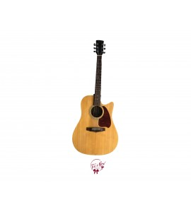 Acoustic Guitar (Ibanez)